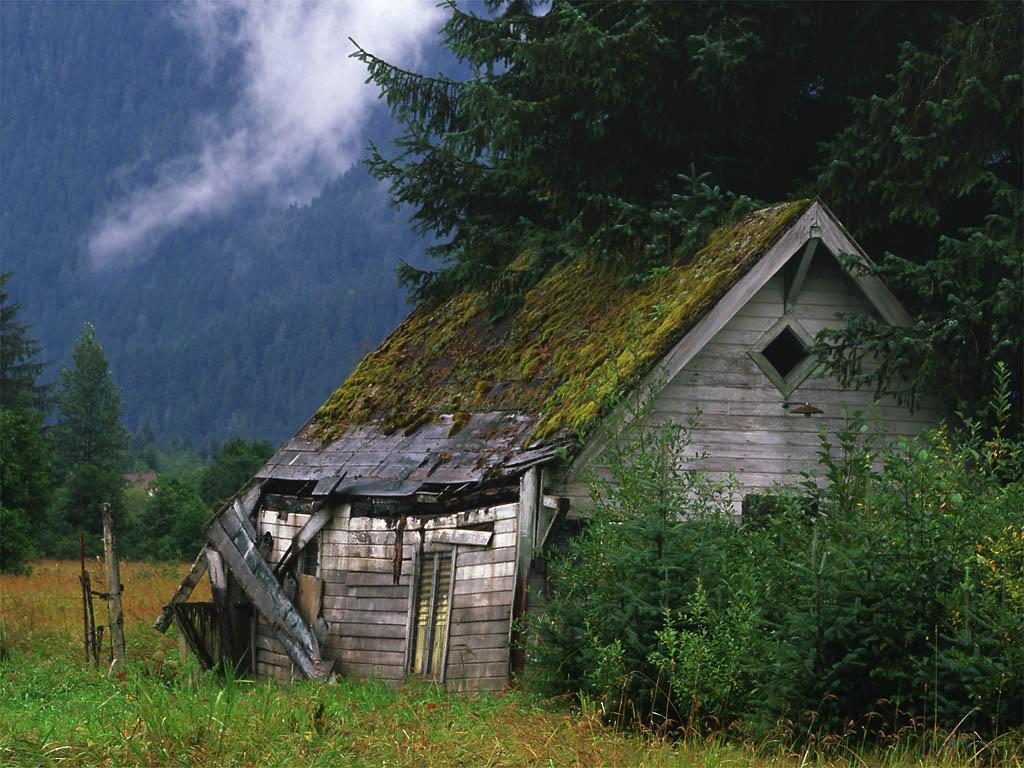 une cabane dans la montagne